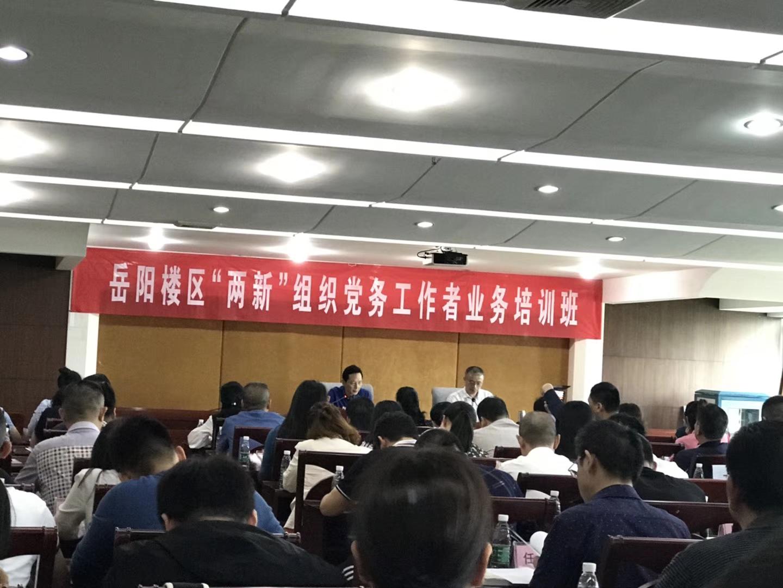 """岳阳市岳阳楼区非公综合党委组织""""两新""""业务培训 助力非公党建"""