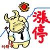 【涨停】牛股交流群
