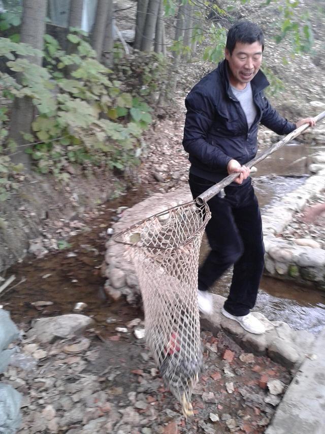 秦岭,大山里的那些人那些事  (1)西北行(七) - 掬水 - 掬水的博客