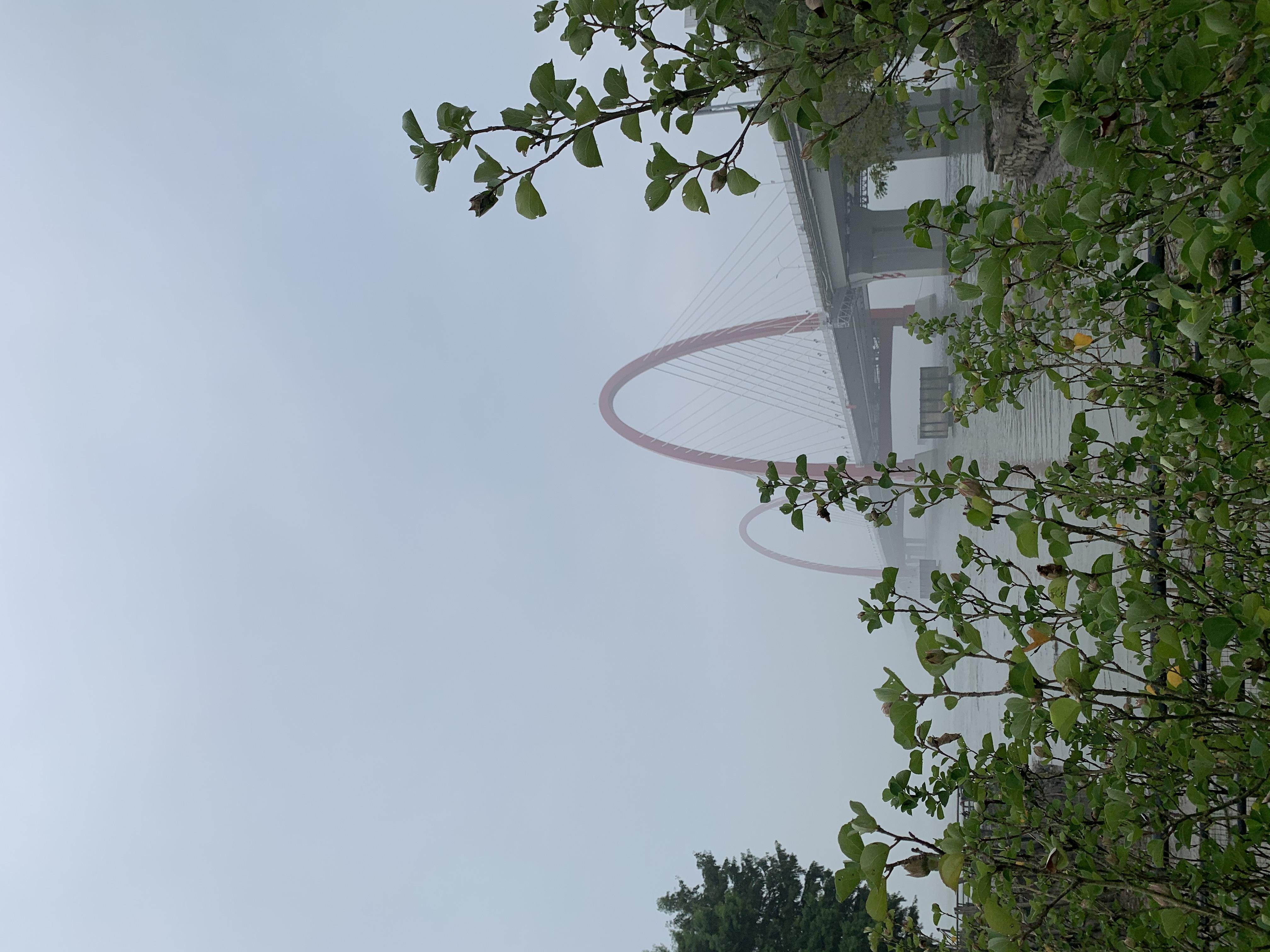 绿叶掩映中的之江大桥