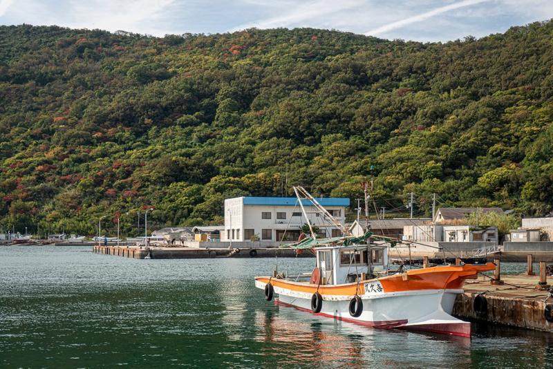濑户内三年展旨在为像女木岛这样的小岛带去新能源