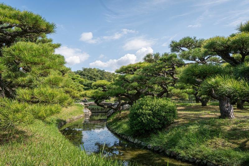高松市是濑户内群岛的门户,也是栗林公园的所在地,在那里你可以轻松地花上三个小时漫无目的地漫步